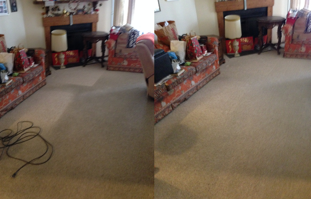 All Natural Carpet Cleaning