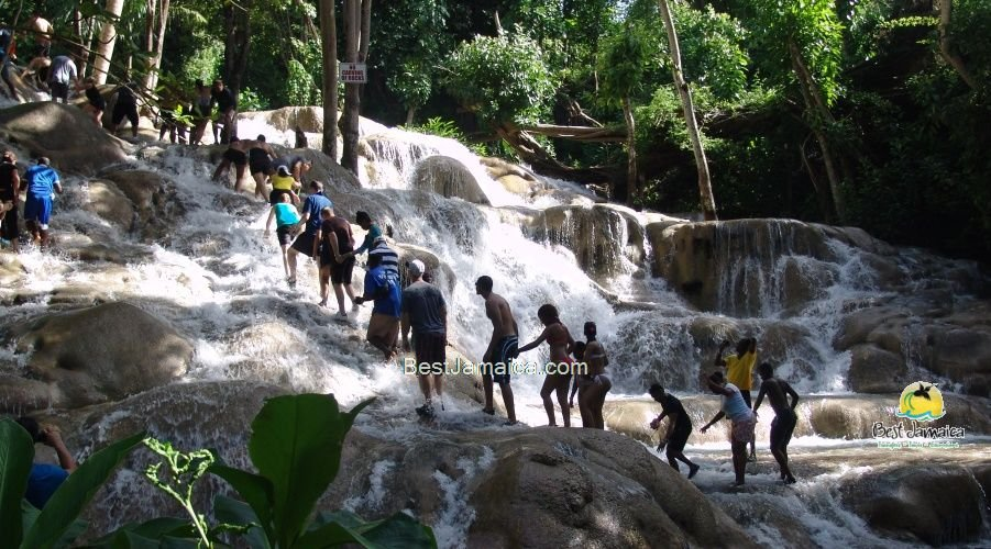 Dunn's River Falls Excursions