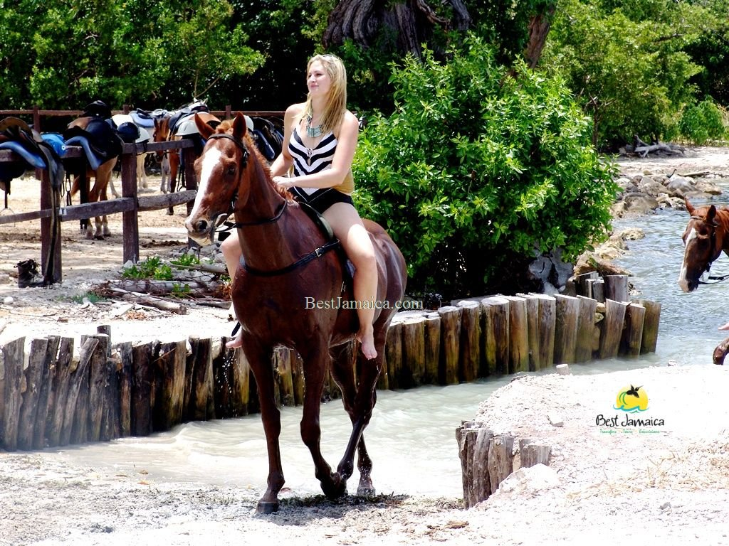 Best Jamaica Horseback Ride and Swim
