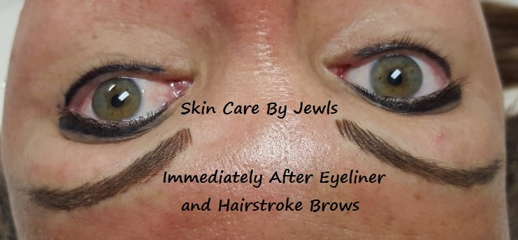 Hairstroke Brows Microblading Permanent Makeup in Lakewood Ranch, Bradenton, Sarasota and Tampa