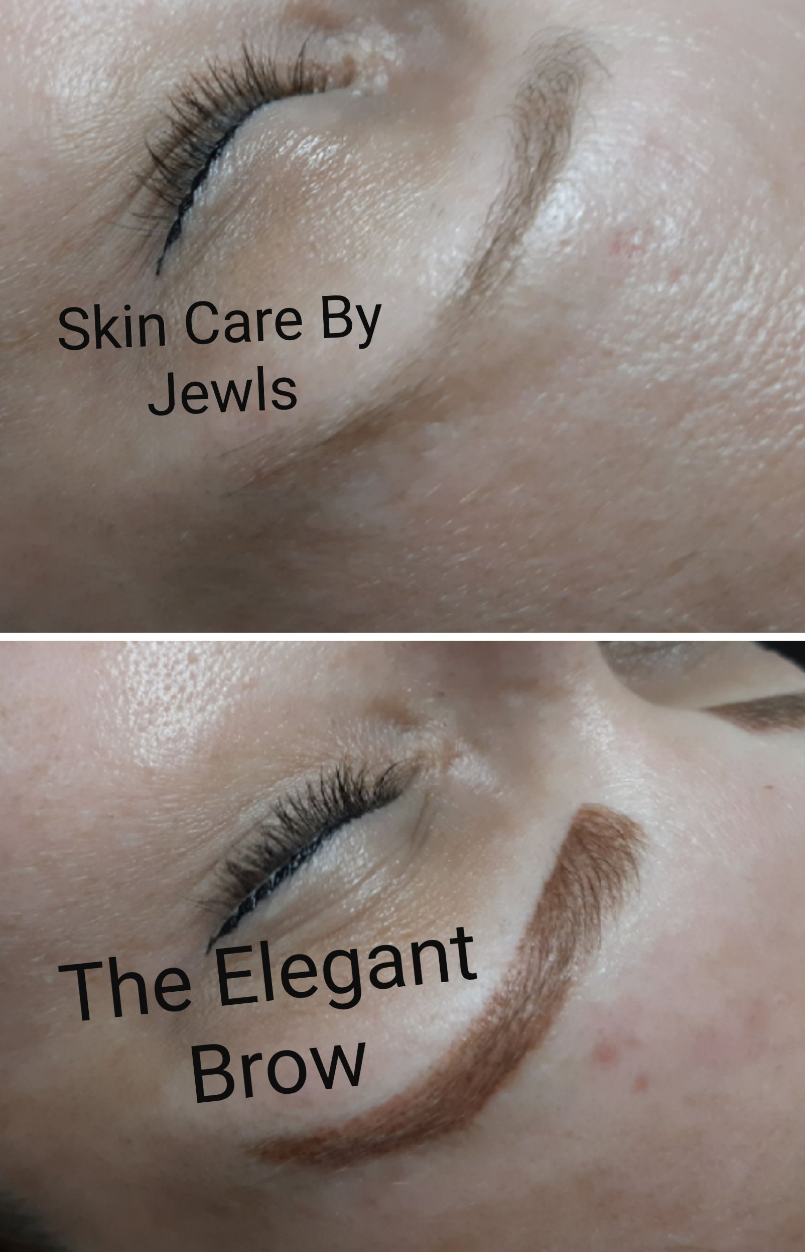The Elegant Brow