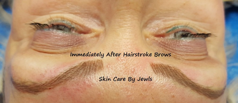 Hairstroke Brows - Microblading - Permanent Makeup Sarasota Bradenton Lakewood Ranch