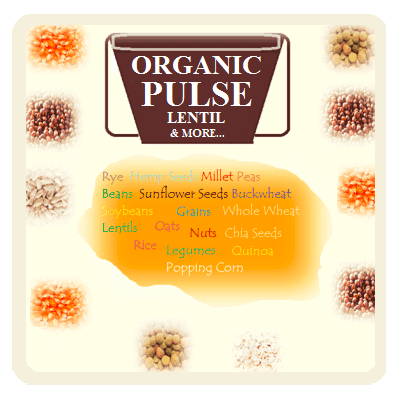 Organic Pulse, Lentil, Seeds, Grains