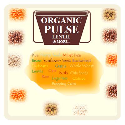 Organic Pulse, Lentil, Seeds, Grains