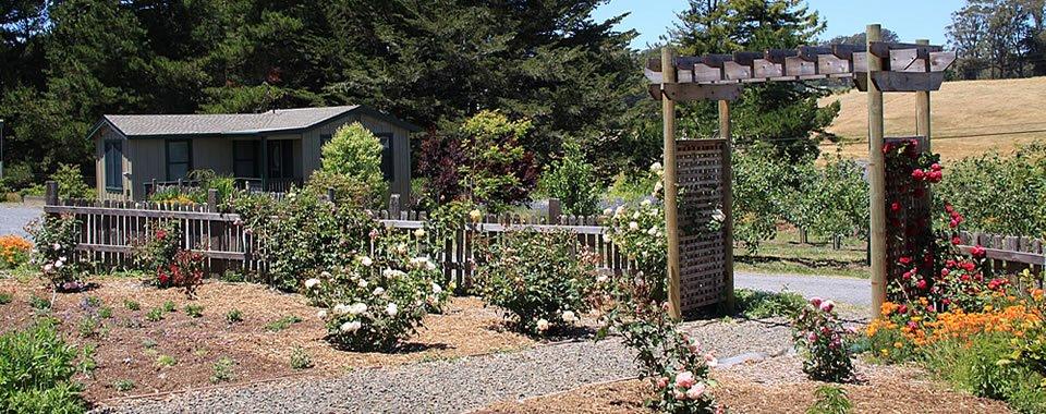 AppleGarden Cottage & Farm