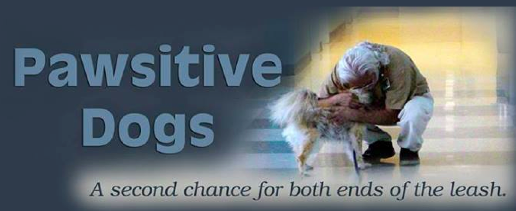 Pawsitive Dogs- A second chance for both ends of the leash.