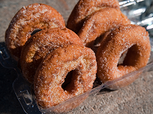 Apple Cider Donuts - Hendersonville Orchard Farm