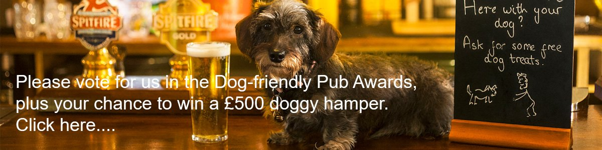 Dog Friendly Awards